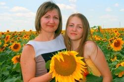 sunflower-834999_1920